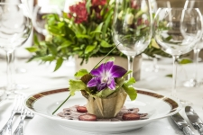 Restauracja Wierzynek Krakow - organizacja wesela wesele - Przystawka2