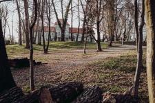Dwor Sierakow_sesja slubna_dominiclulaweddingphotographer (7)